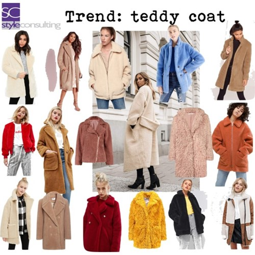 Jas Teddy.Aaibare Trend De Teddy Jas Style Consulting